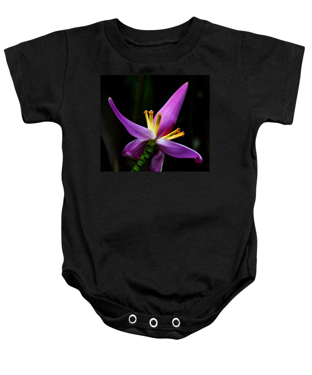 Flower Baby Onesie featuring the photograph Tropical Flower by Brian Kerls