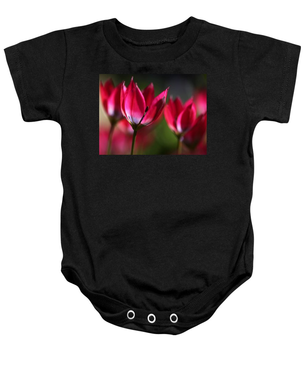 Flowers Baby Onesie featuring the photograph Tulips by Annie Snel