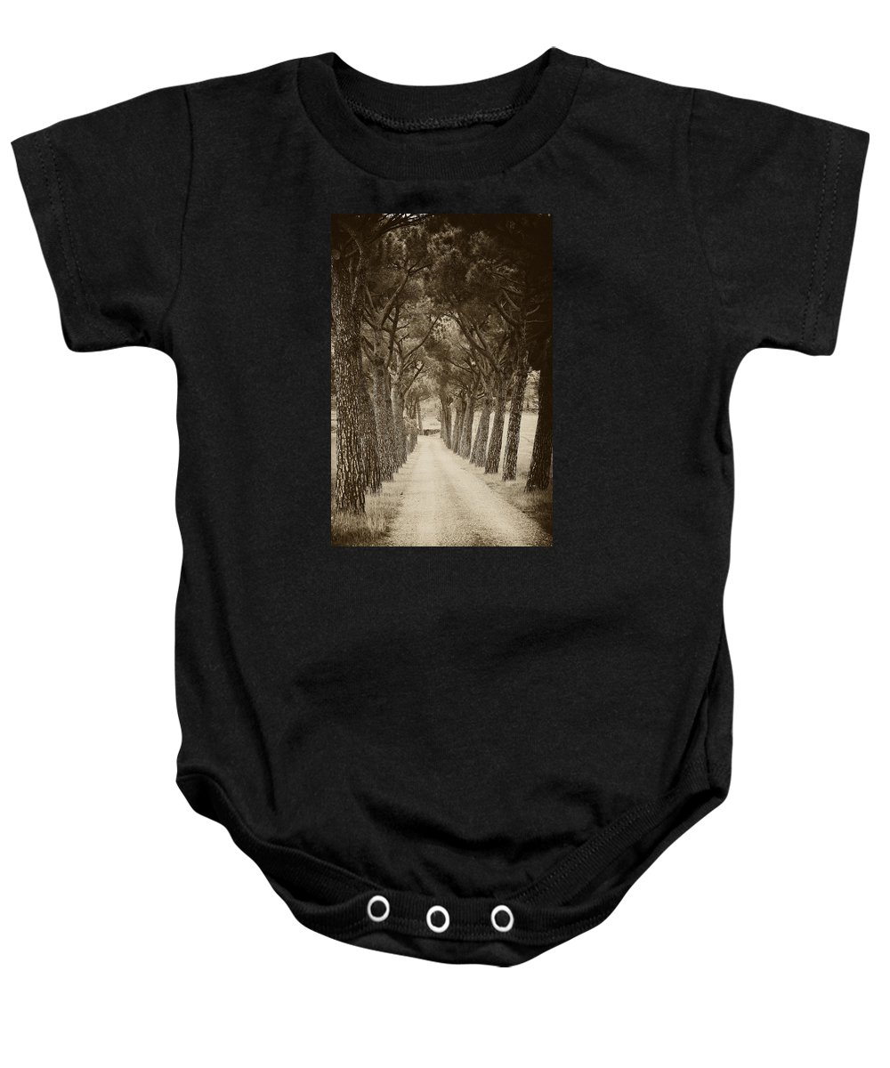Tuscan Baby Onesie featuring the photograph Tuscan Pines by Hugh Smith