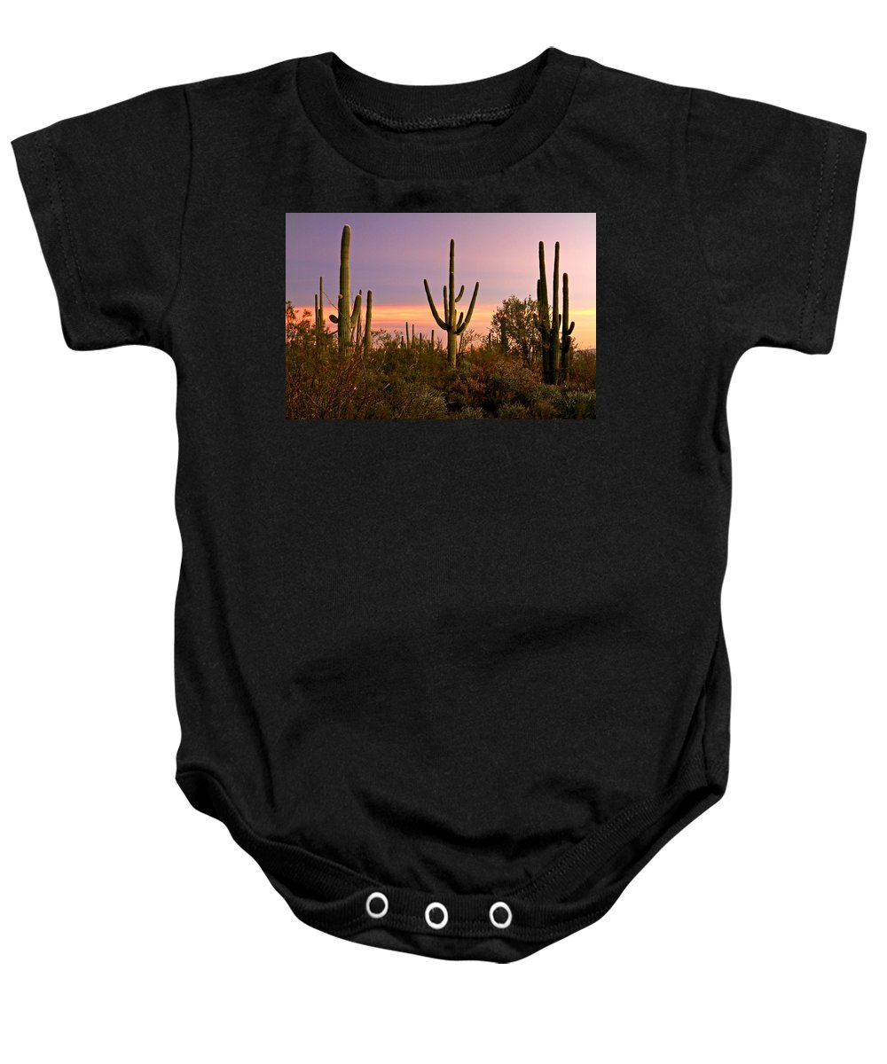 Arizona Baby Onesie featuring the photograph Twilight After Sunset In The Cactus Forests Of Saguaro National Park by Ed Riche