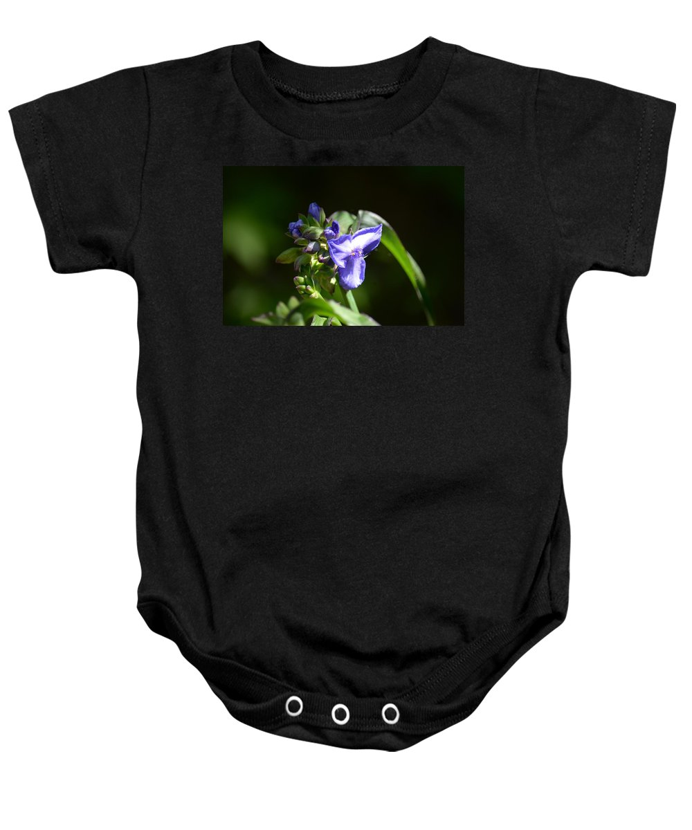 Ultra Violet Wildflower Baby Onesie featuring the photograph Ultra Violet Wildflower by Maria Urso