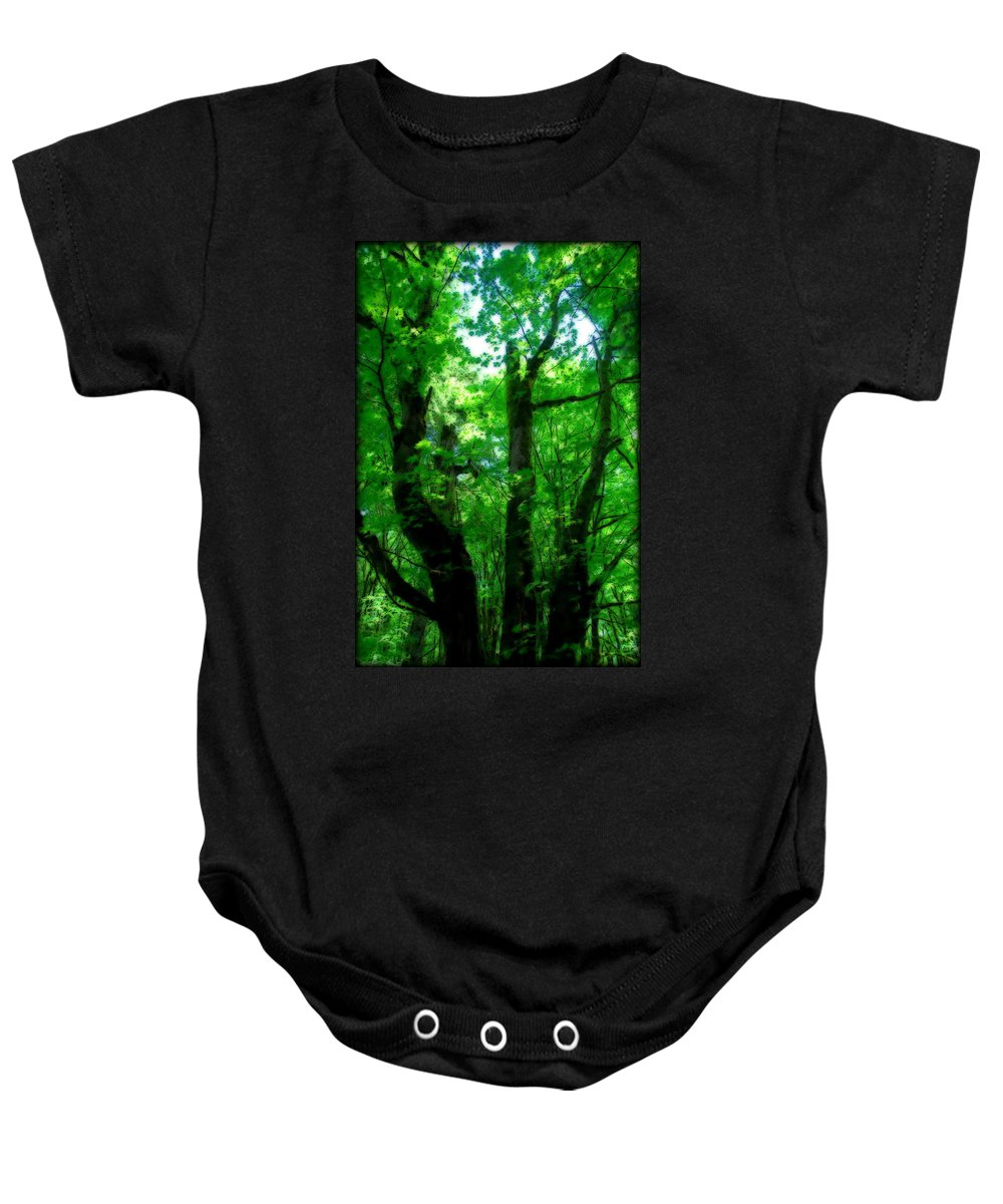 Trail Baby Onesie featuring the photograph Up Through The Trees by Kathy Sampson