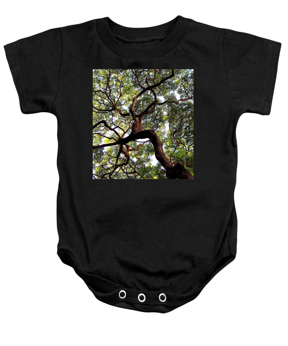 Trees Baby Onesie featuring the photograph Veins Of Life by Karen Wiles