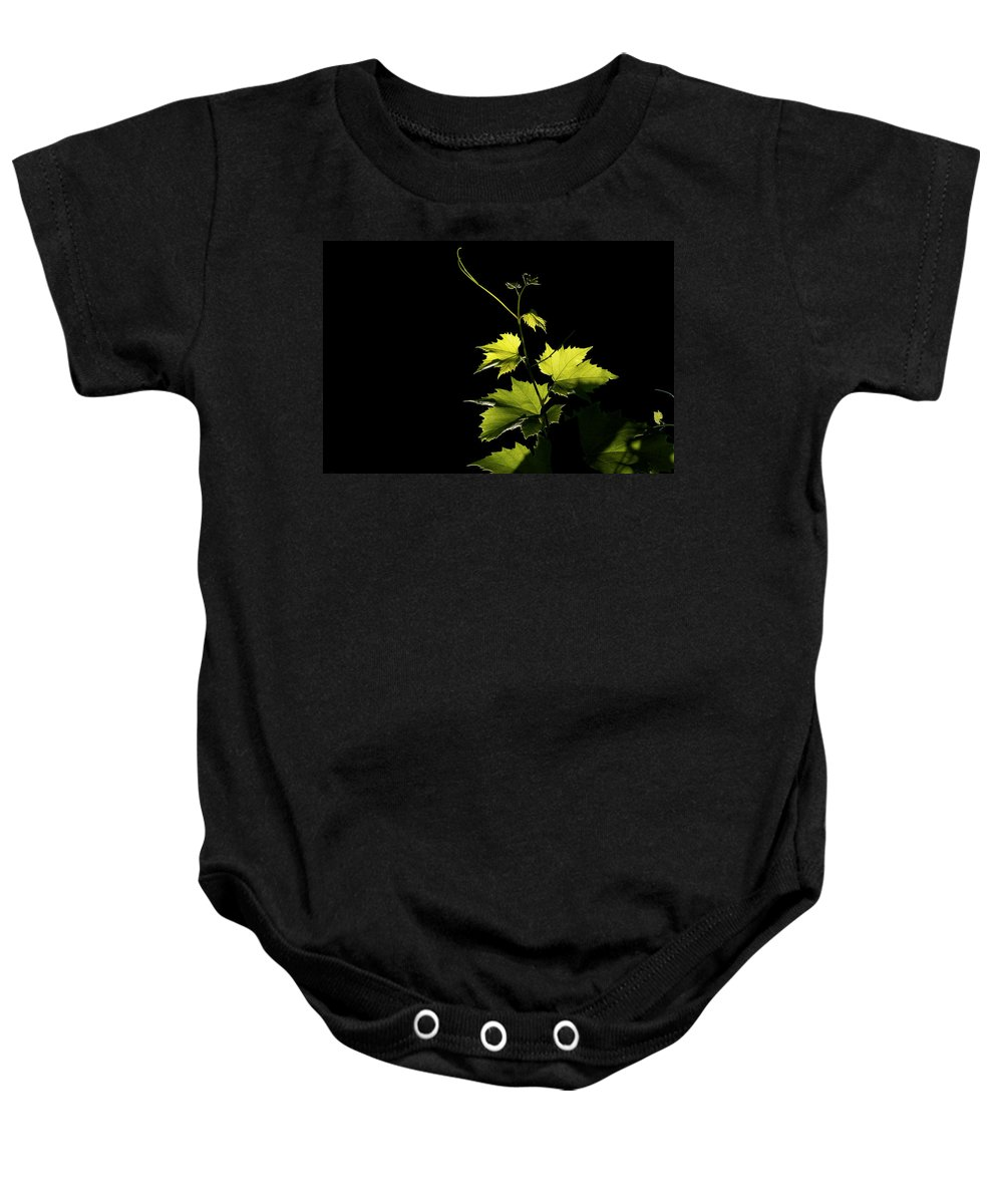 Vine Baby Onesie featuring the photograph Vine Risisng by David Resnikoff