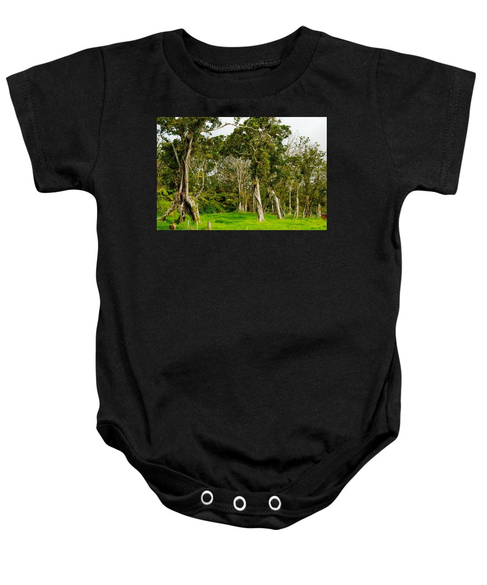 Hawaii Baby Onesie featuring the photograph Volcano Ranch by Lehua Pekelo-Stearns