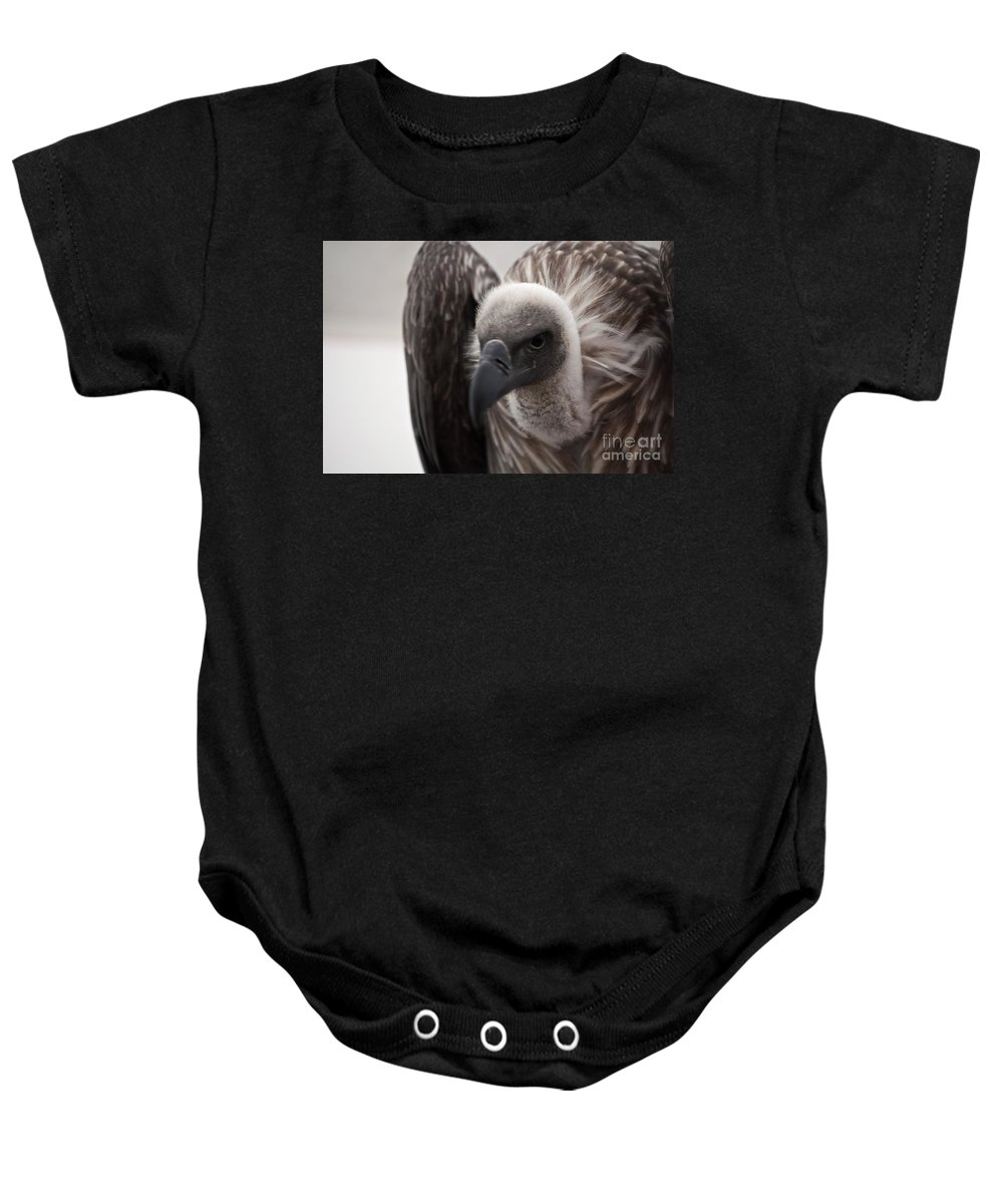 Vulture Baby Onesie featuring the photograph Vulture by Steve Purnell
