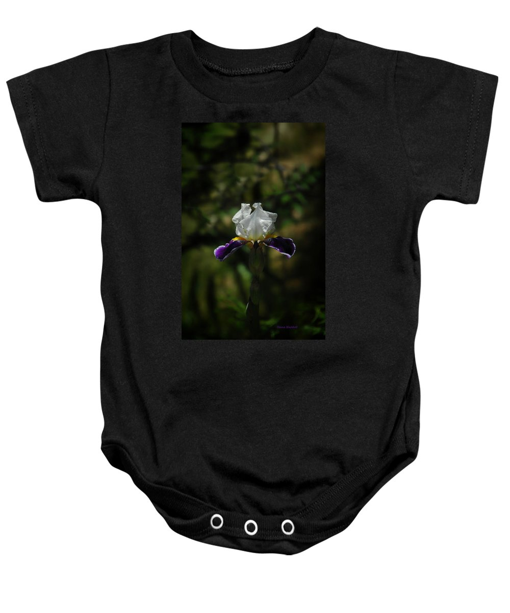 Iris Baby Onesie featuring the photograph Wearing Purple Today by Donna Blackhall