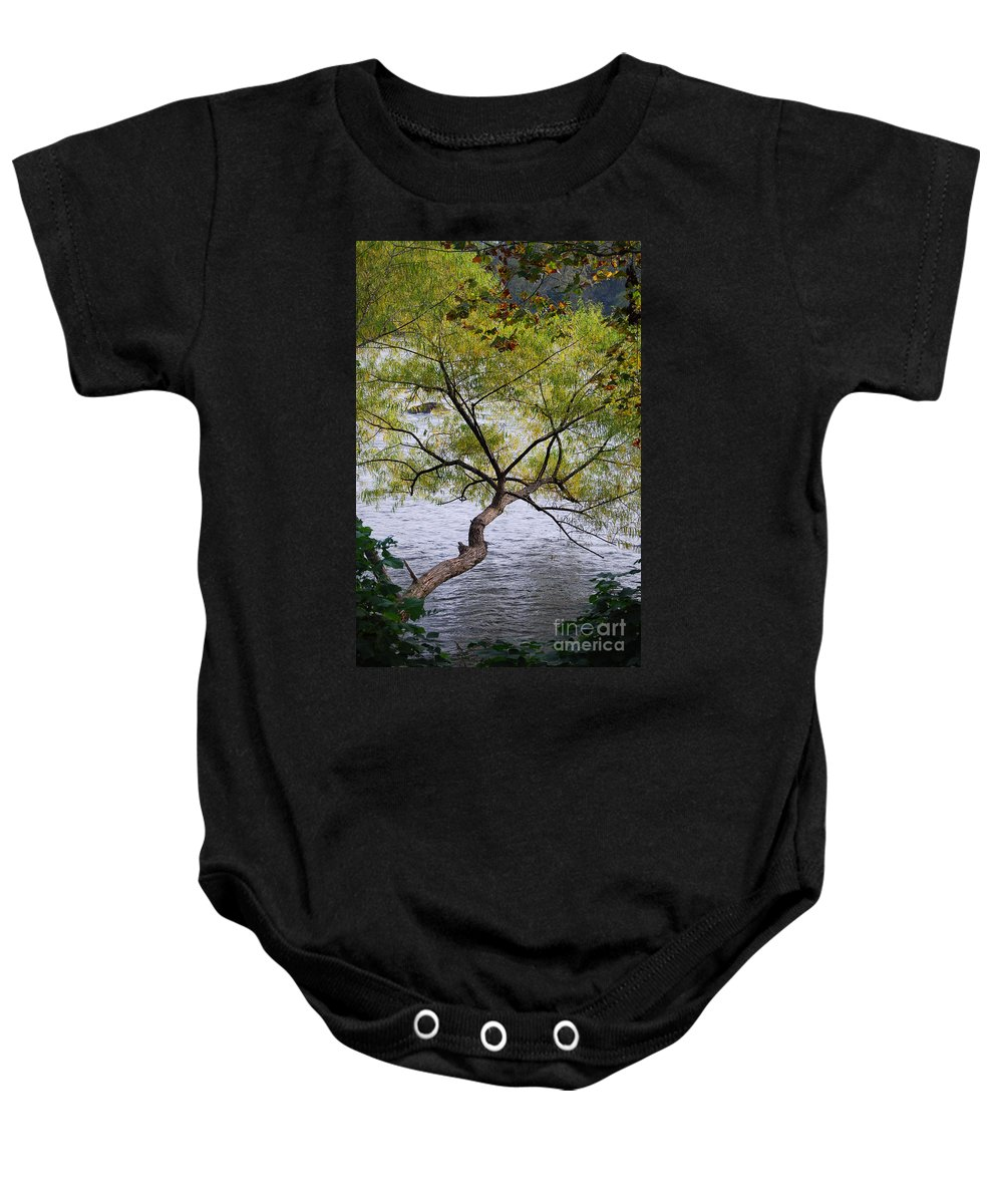 Scenic Tours Baby Onesie featuring the photograph Weeping Willow by Skip Willits