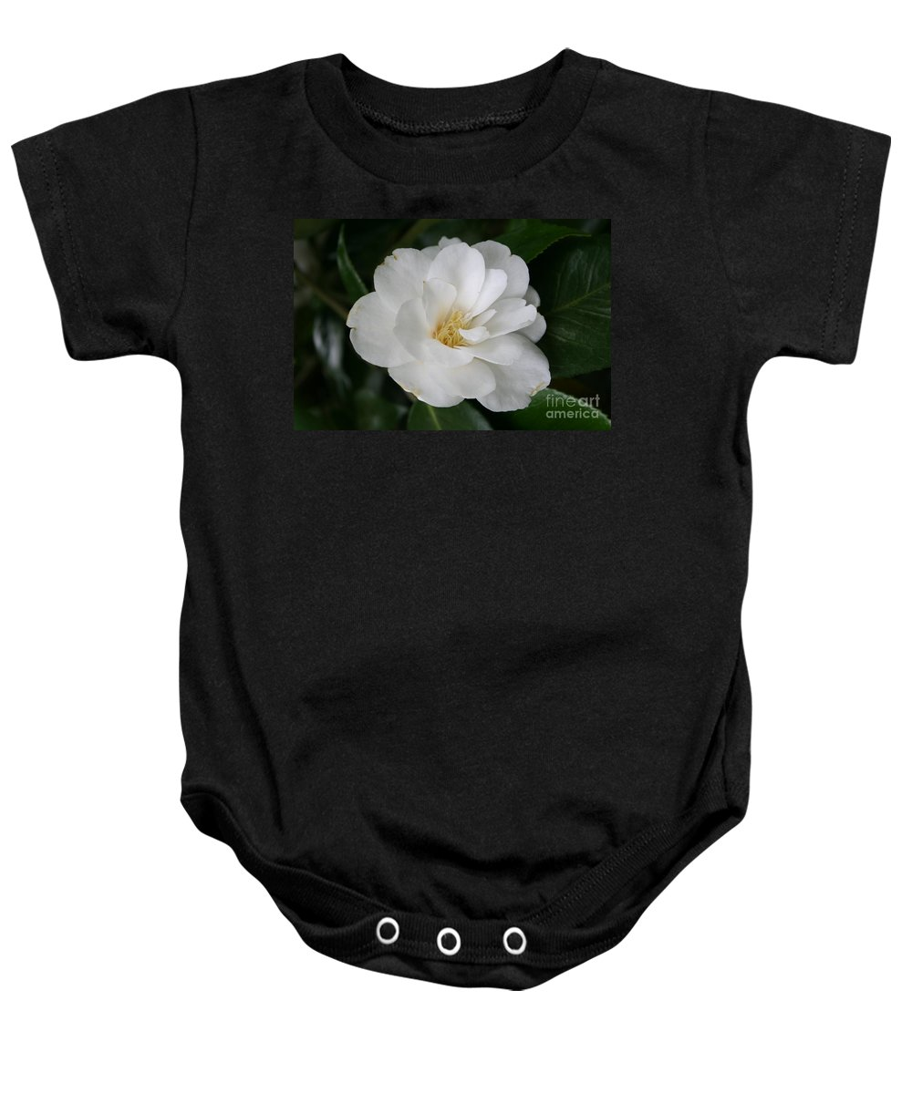 White Camellia Baby Onesie featuring the photograph Snow White Camellia by Christiane Schulze Art And Photography