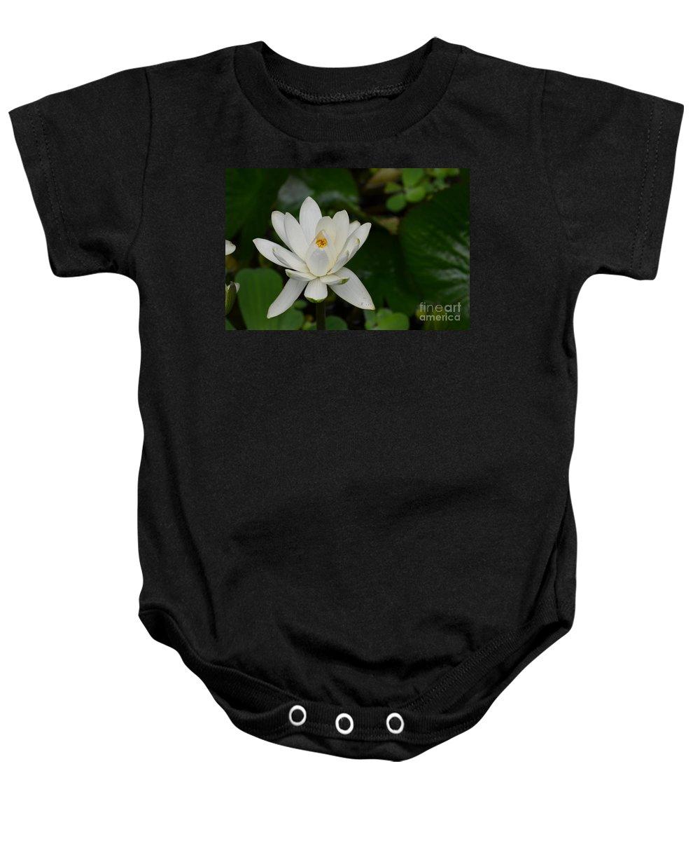 Lotus Baby Onesie featuring the photograph White Lotus by DejaVu Designs