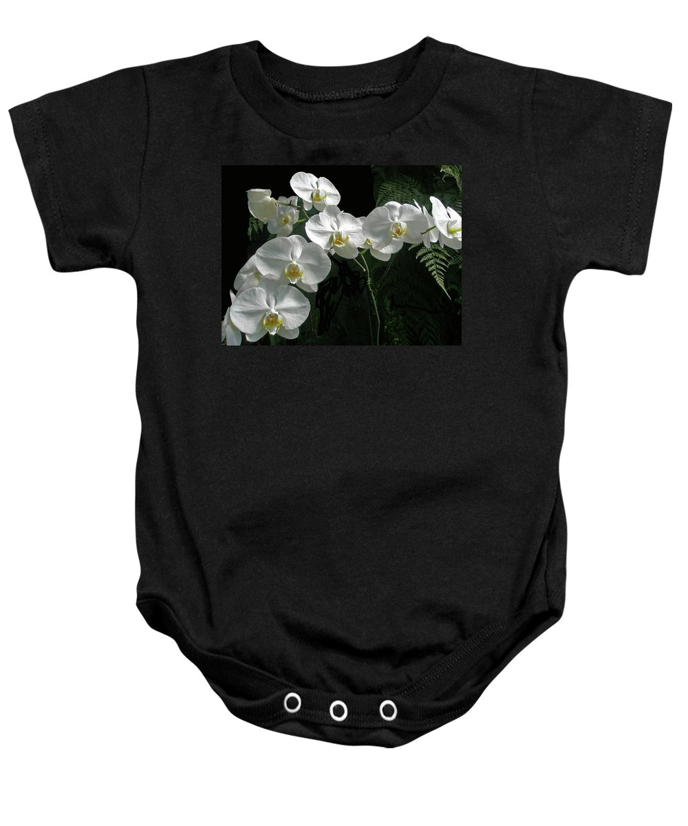 Orchid Baby Onesie featuring the photograph White Moth Orchid Phalaenopsis And Ferns by Mother Nature