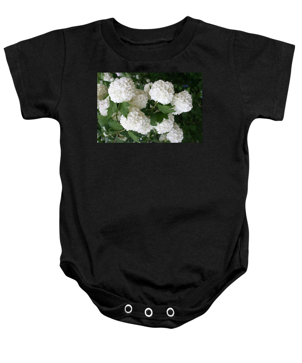 White Snowball Baby Onesie featuring the photograph White Snowball Bush by Christiane Schulze Art And Photography