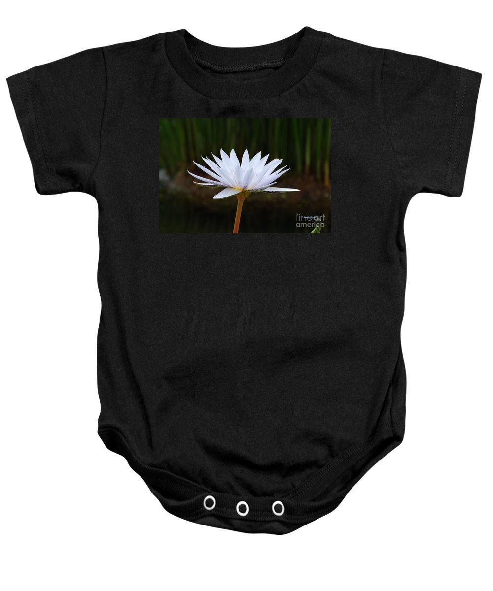 Water Lily Baby Onesie featuring the photograph White Water Lily by DejaVu Designs