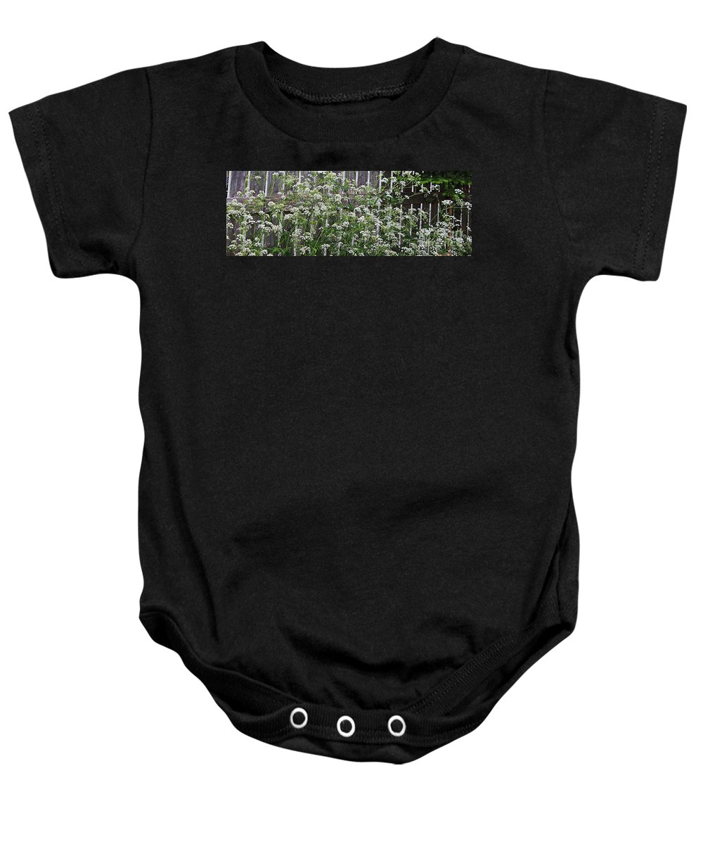 Wild Caraway Baby Onesie featuring the photograph Wild Caraway And Old Fence by Barbara Griffin