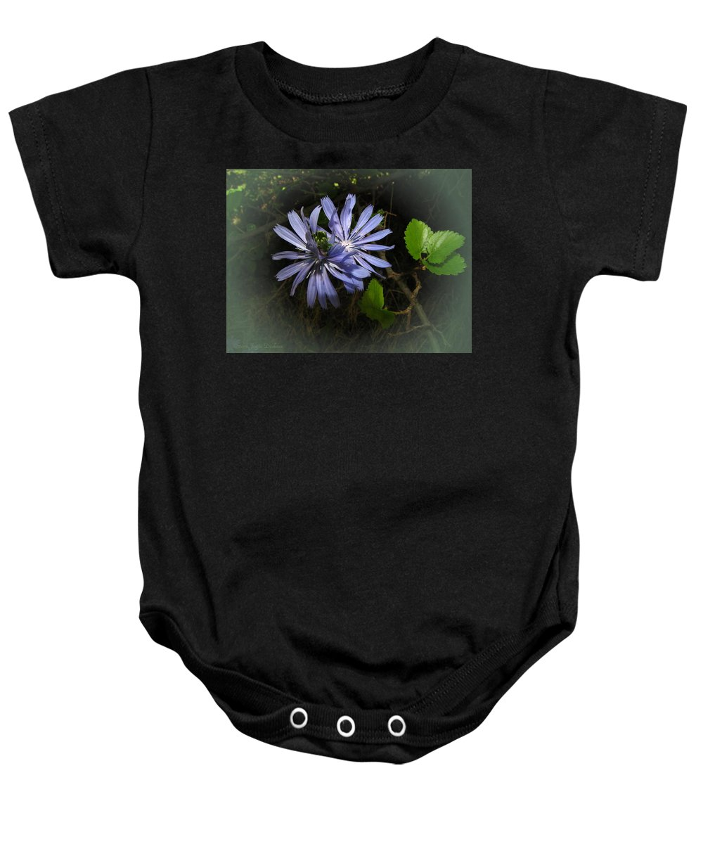 Chickweed Baby Onesie featuring the photograph Wild Chickweed 2013 by Joyce Dickens