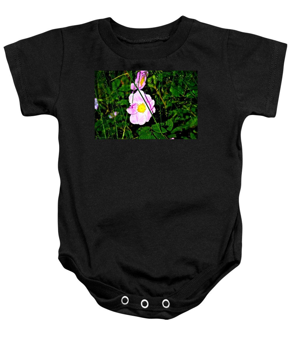 Wild Rose Baby Onesie featuring the photograph Wild Rose by Tara Potts