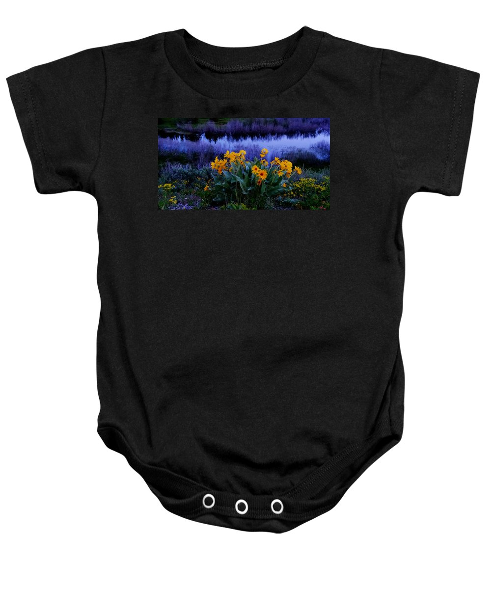 Wildflowers At Sunset Baby Onesie featuring the photograph Wildflower Reflection by Dan Sproul