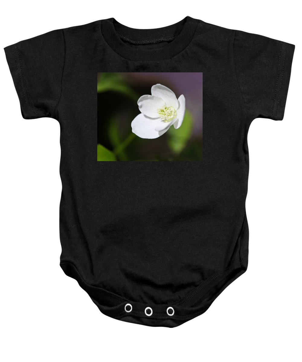 Windflower Baby Onesie featuring the photograph Wood Anemone by Melinda Fawver