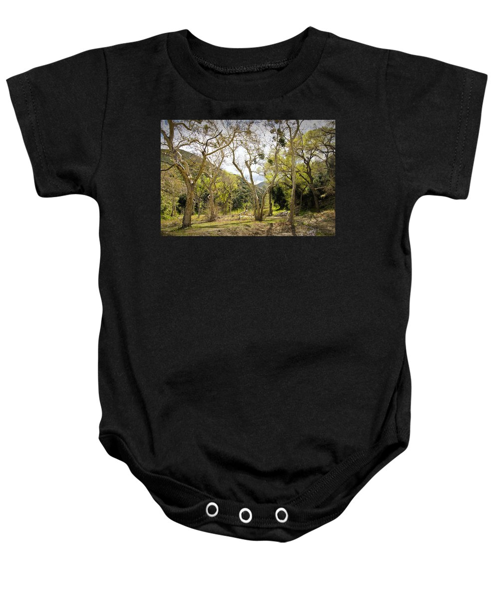 Art Baby Onesie featuring the photograph Woodland Glen In The California Vallecito Mountains by Randall Nyhof