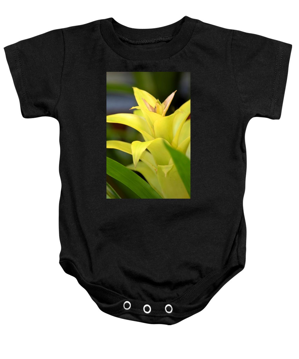 Yellow Cream Tropical Baby Onesie featuring the photograph Yellow Cream Tropical by Maria Urso