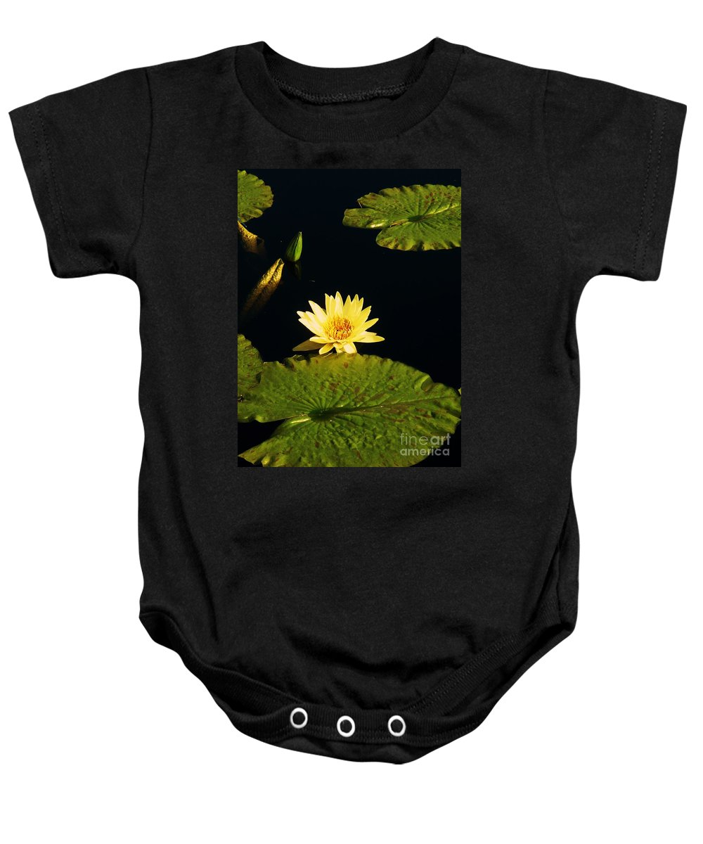 Photograph Baby Onesie featuring the photograph Yellow Lily by Eric Schiabor
