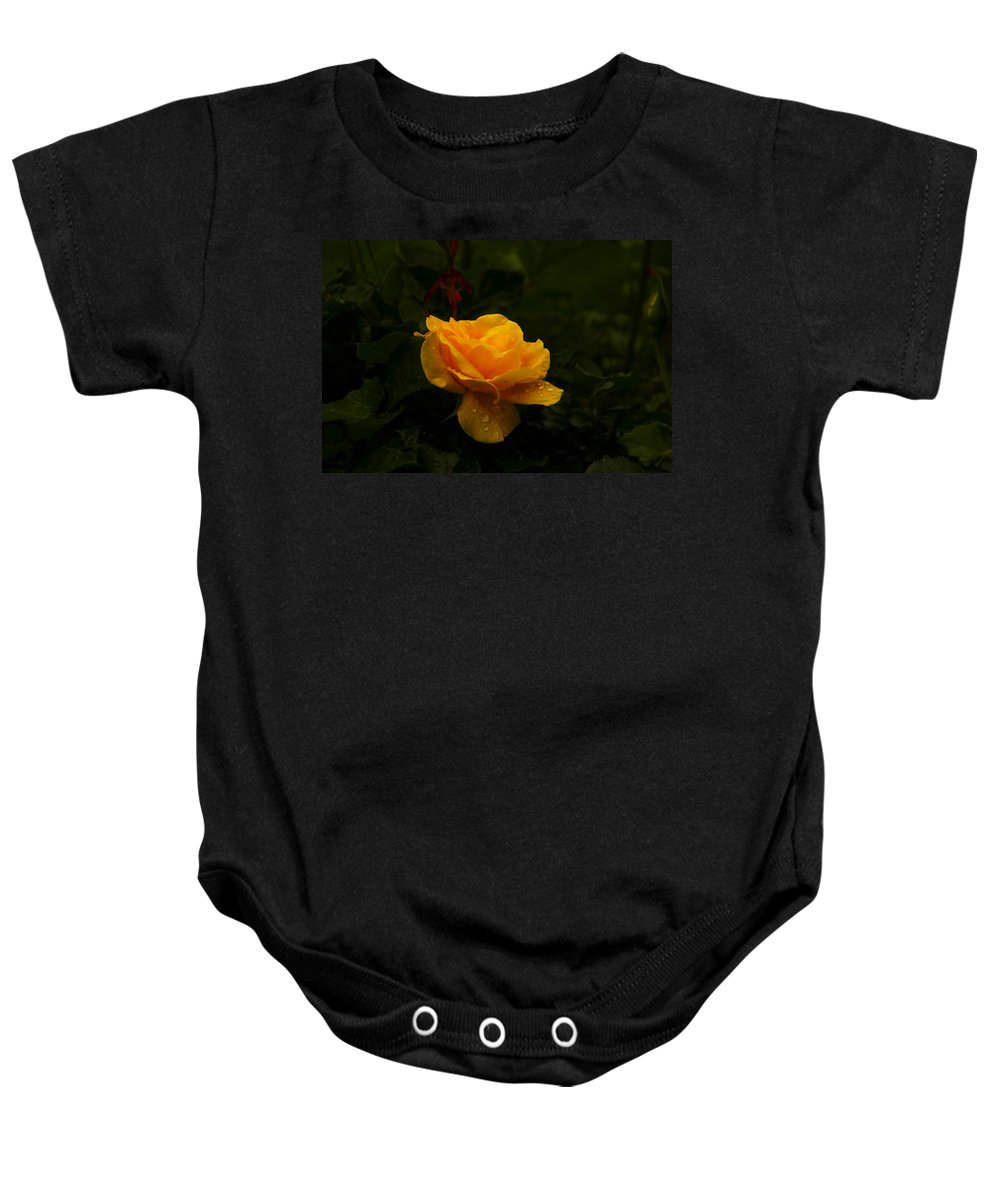 Yellow Baby Onesie featuring the photograph Yellow Rose Dapples With Waterdfrops by Jeff Swan