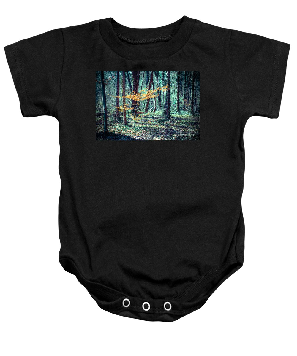 Beech Baby Onesie featuring the photograph Youngster by Hannes Cmarits