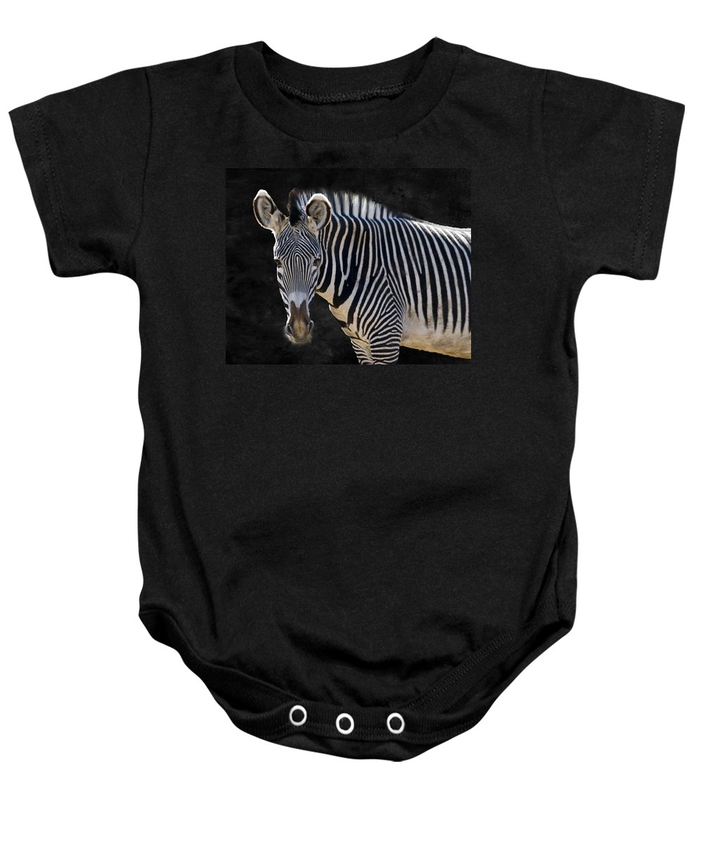 Animal Baby Onesie featuring the photograph Z Is For Zebra by Juli Scalzi