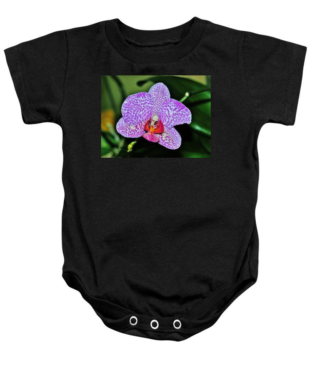 Orchid Baby Onesie featuring the photograph Purple Orchid by Sherman Perry