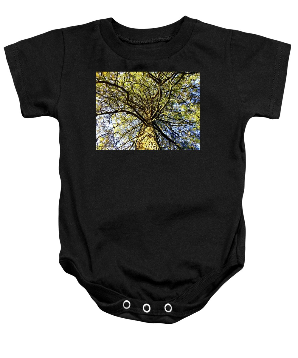Pine Tree Baby Onesie featuring the photograph Stalwart Pine Tree by Will Borden