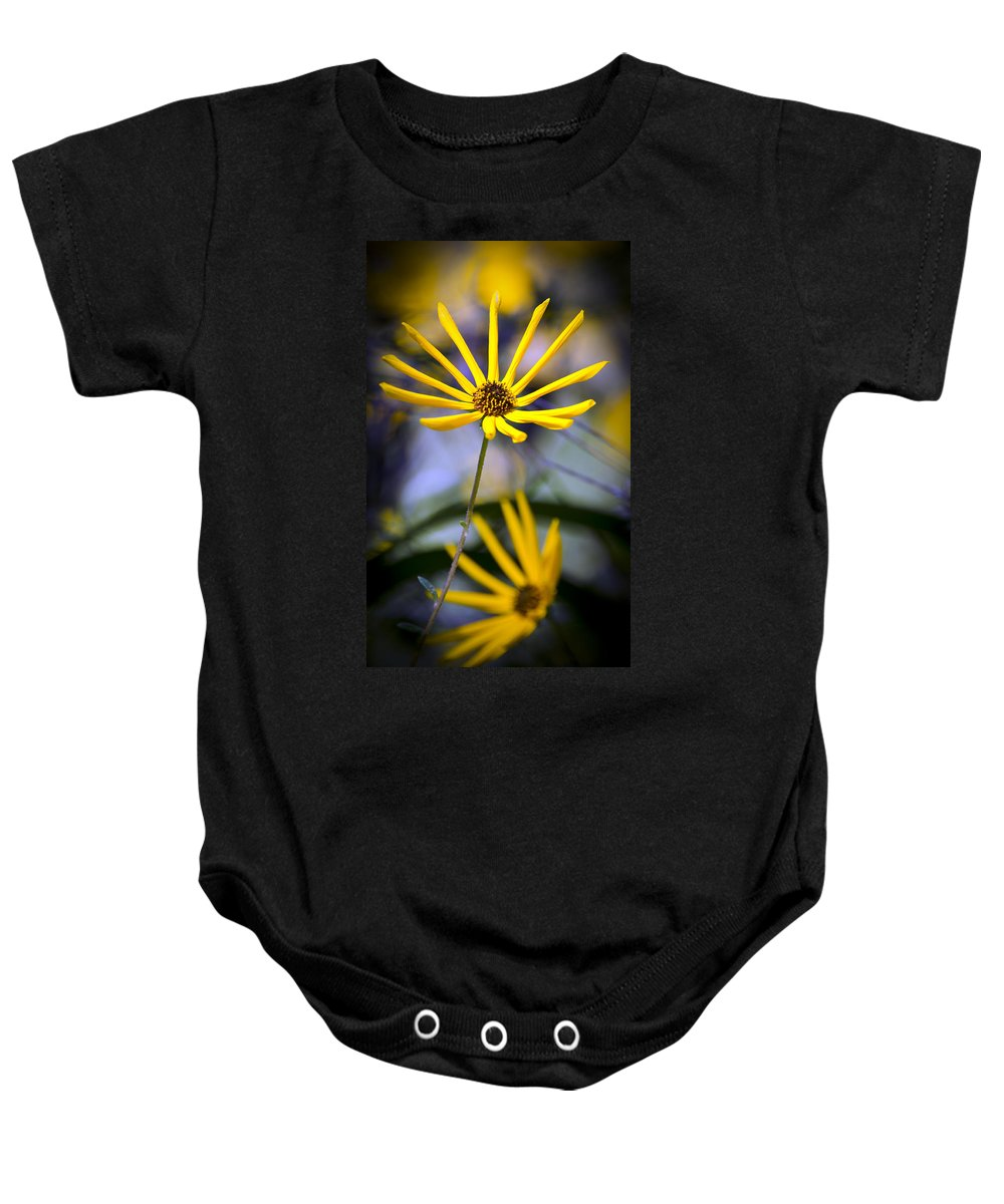 Flowers Baby Onesie featuring the photograph Wild Swamp Daisy by Carolyn Marshall