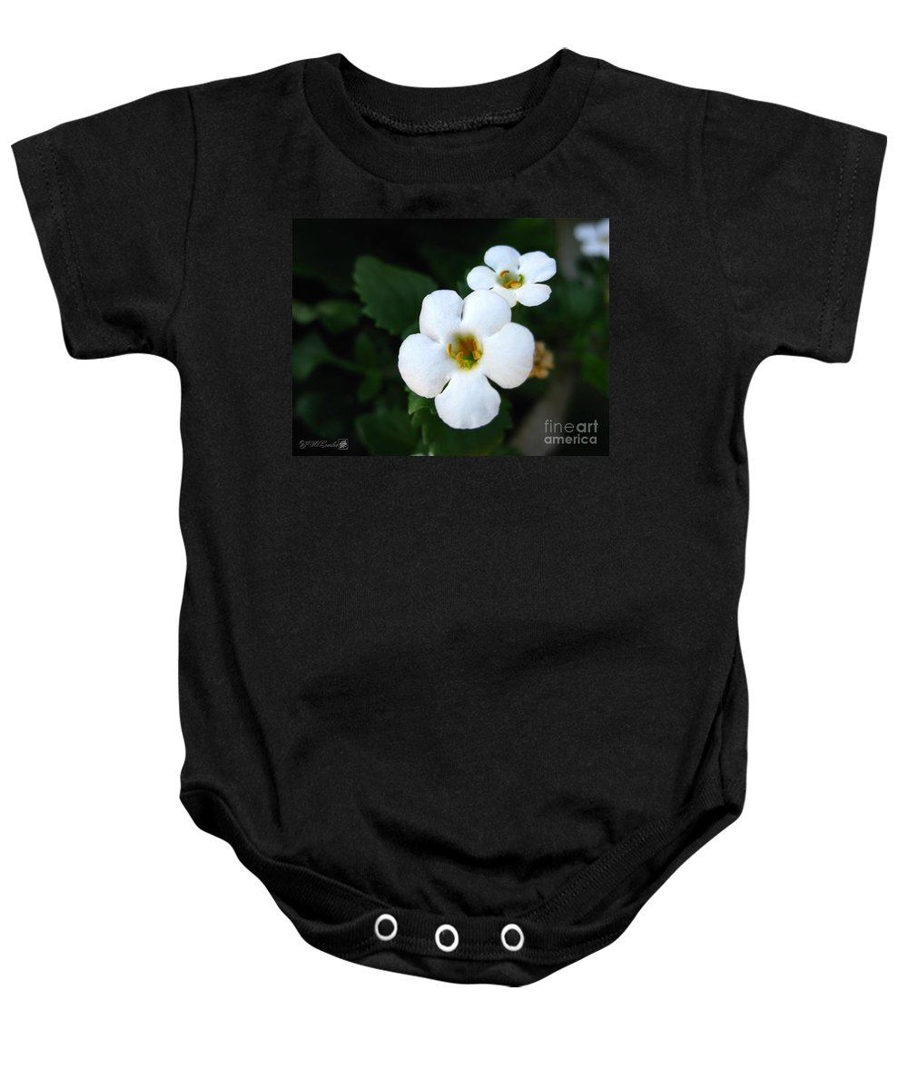 Bacopa Baby Onesie featuring the photograph Bacopa Named Snowtopia by J McCombie