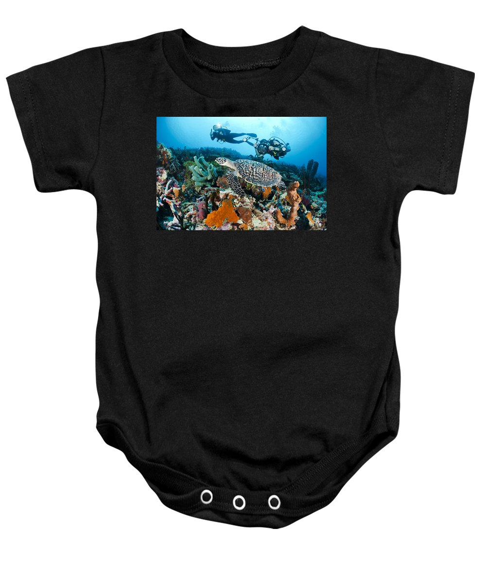 Animal Baby Onesie featuring the photograph Underwater Photography by Dave Fleetham - Printscapes