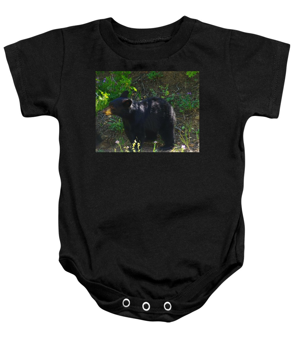 Bears Baby Onesie featuring the photograph A Bear Cub by Jeff Swan