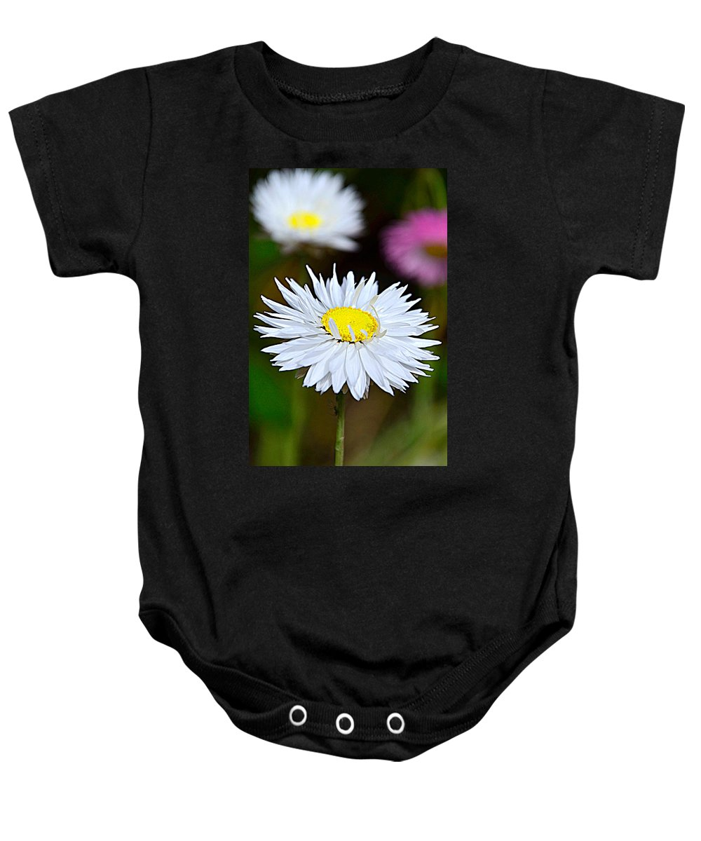 Bokeh Baby Onesie featuring the photograph A Daisy by Martina Fagan