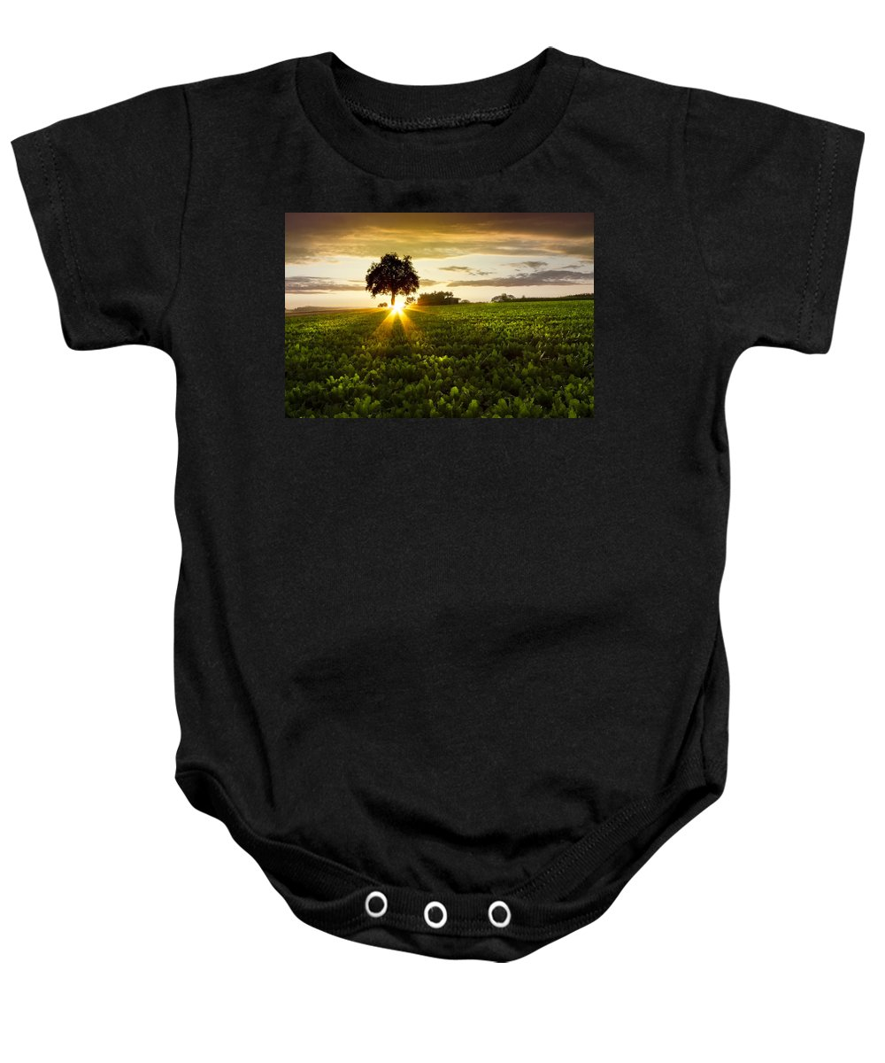 American Baby Onesie featuring the photograph A Golden Evening by Debra and Dave Vanderlaan