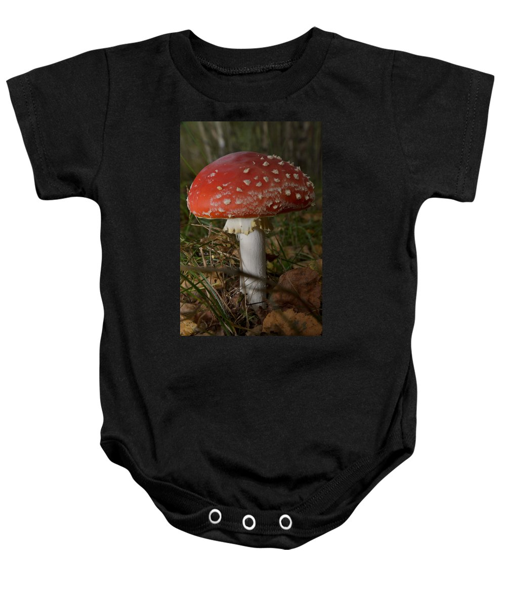Amanita Baby Onesie featuring the photograph Amanita Muscaria by Michael Goyberg
