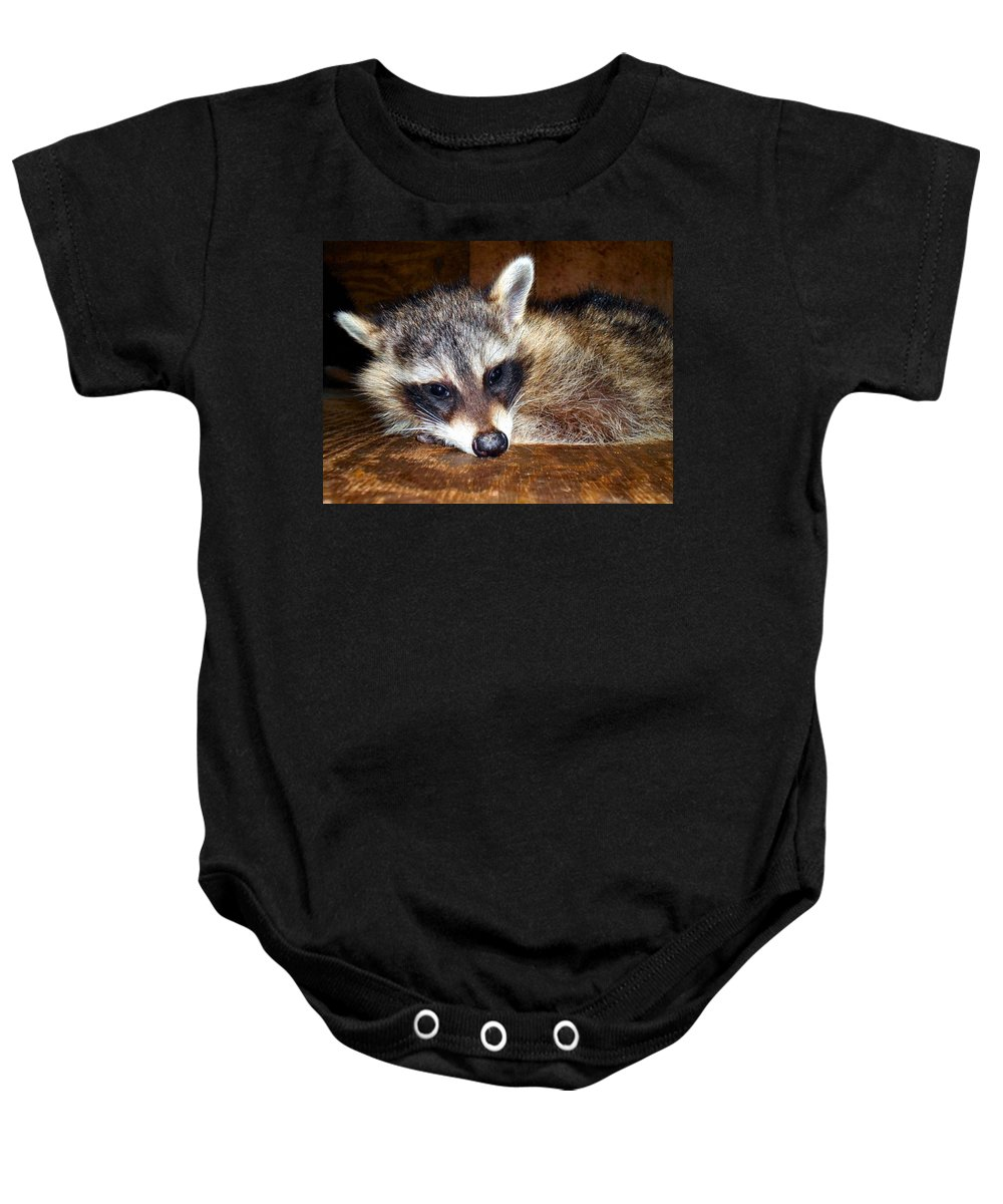 Animal Baby Onesie featuring the photograph Au Naturale Coonie by Art Dingo