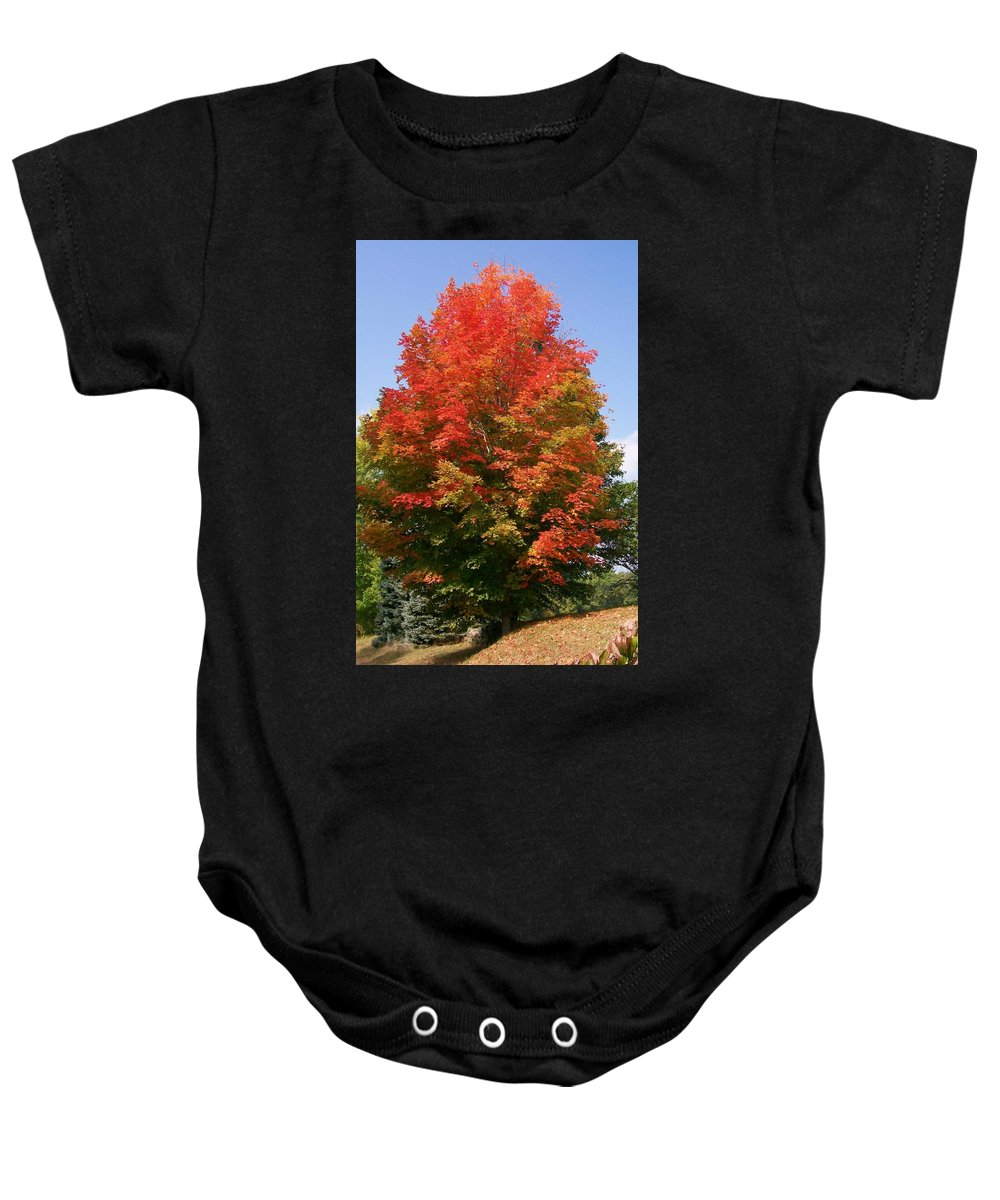 Photo Baby Onesie featuring the photograph Autumn Leaves by Barbara S Nickerson