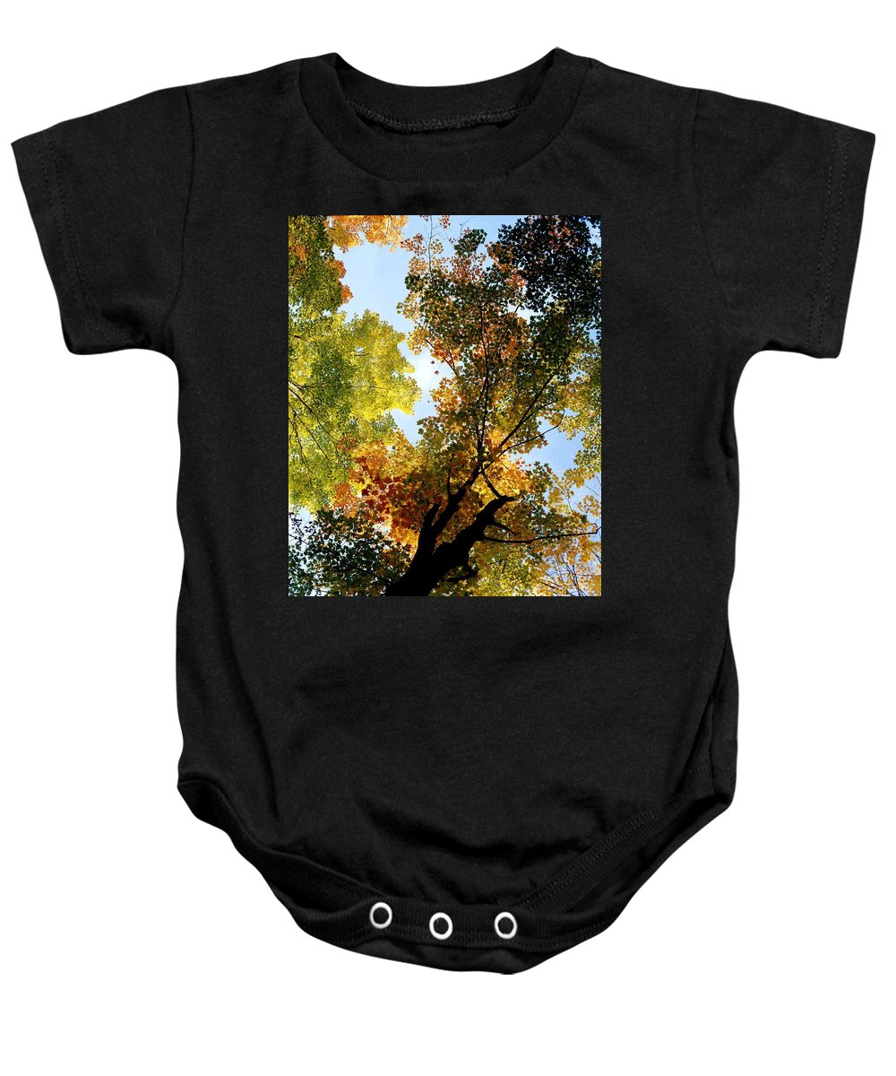 Autumn Colors Baby Onesie featuring the photograph Autumn Trees Low-angle by David Chapman