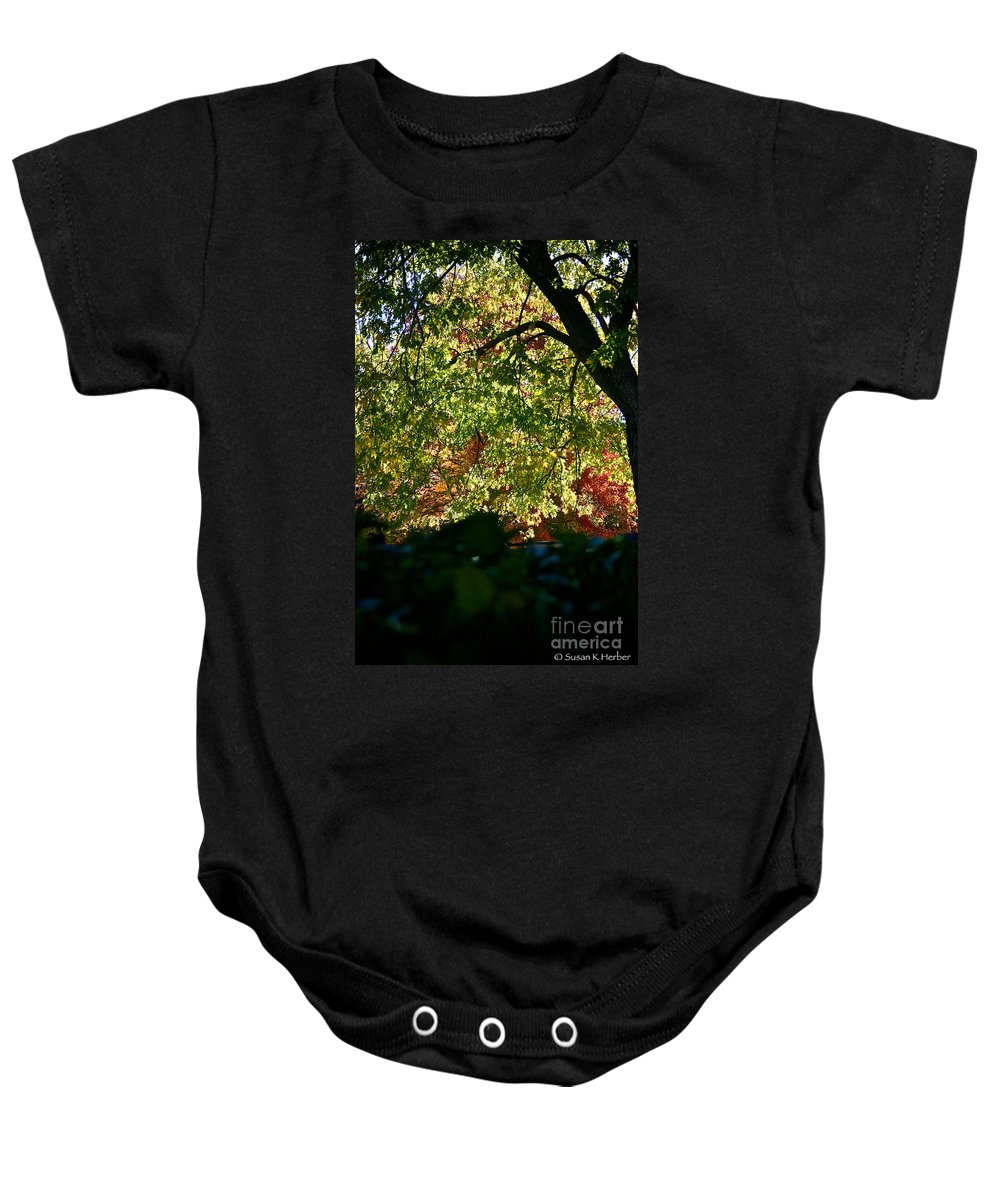 Tree Baby Onesie featuring the photograph Backlit Autumn by Susan Herber
