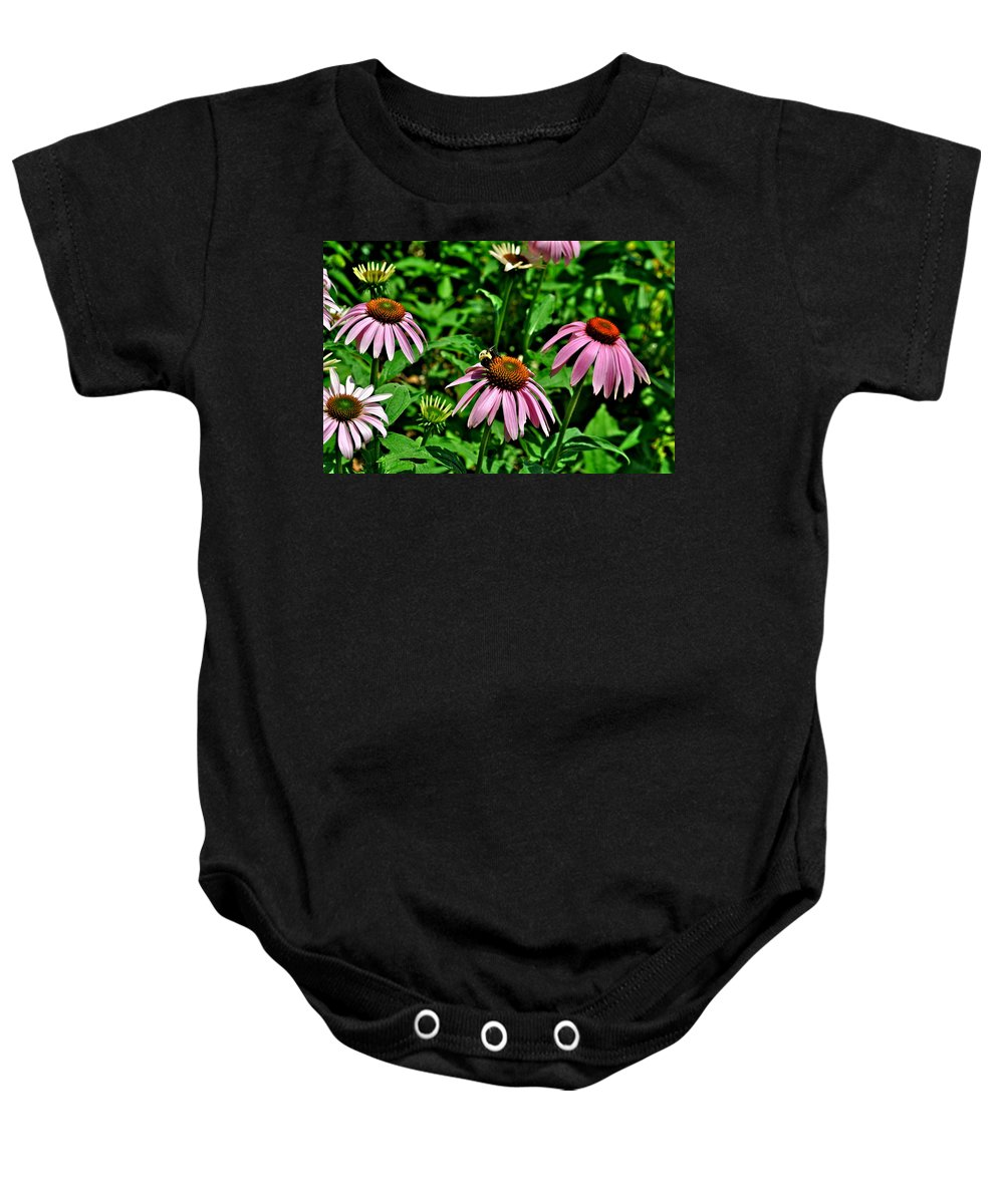 Bee Photographs Baby Onesie featuring the photograph Bee And Flower by Catherine Conroy
