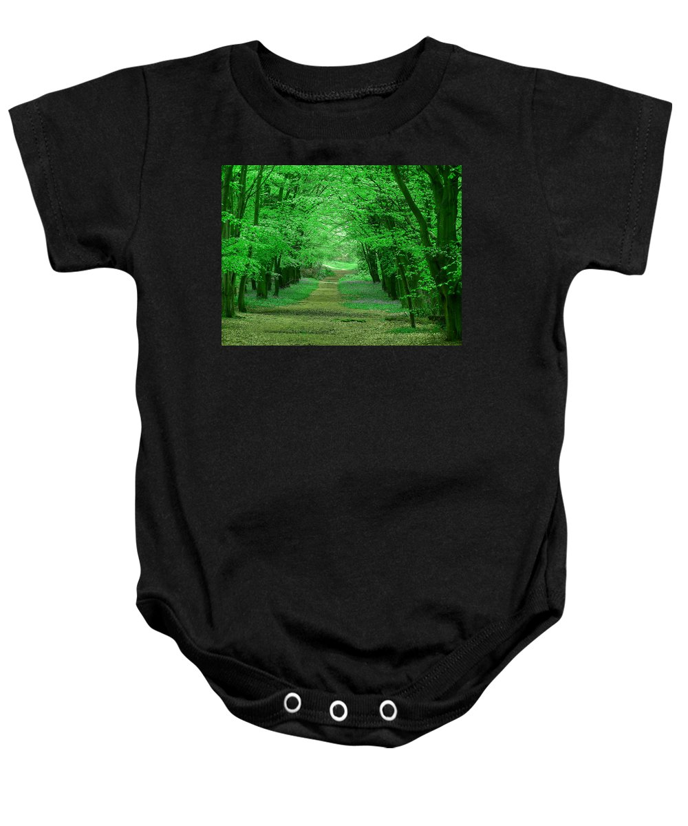 Places Baby Onesie featuring the photograph Beechwood Grove by Bob Kemp