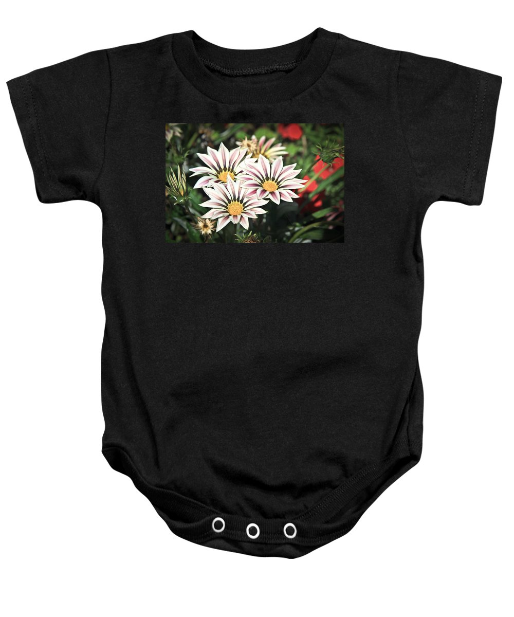 Flowers Baby Onesie featuring the photograph Blooming by Steve McKinzie