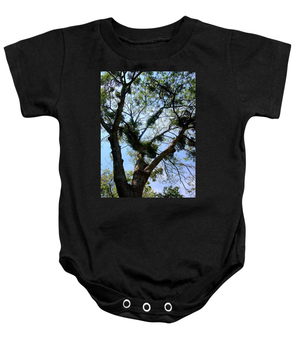 Branch Baby Onesie featuring the photograph Branched Out by David G Paul