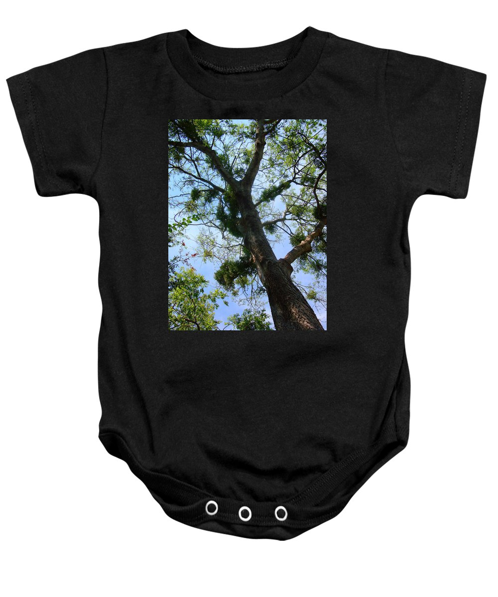 Tree Baby Onesie featuring the photograph Branching Out by David G Paul