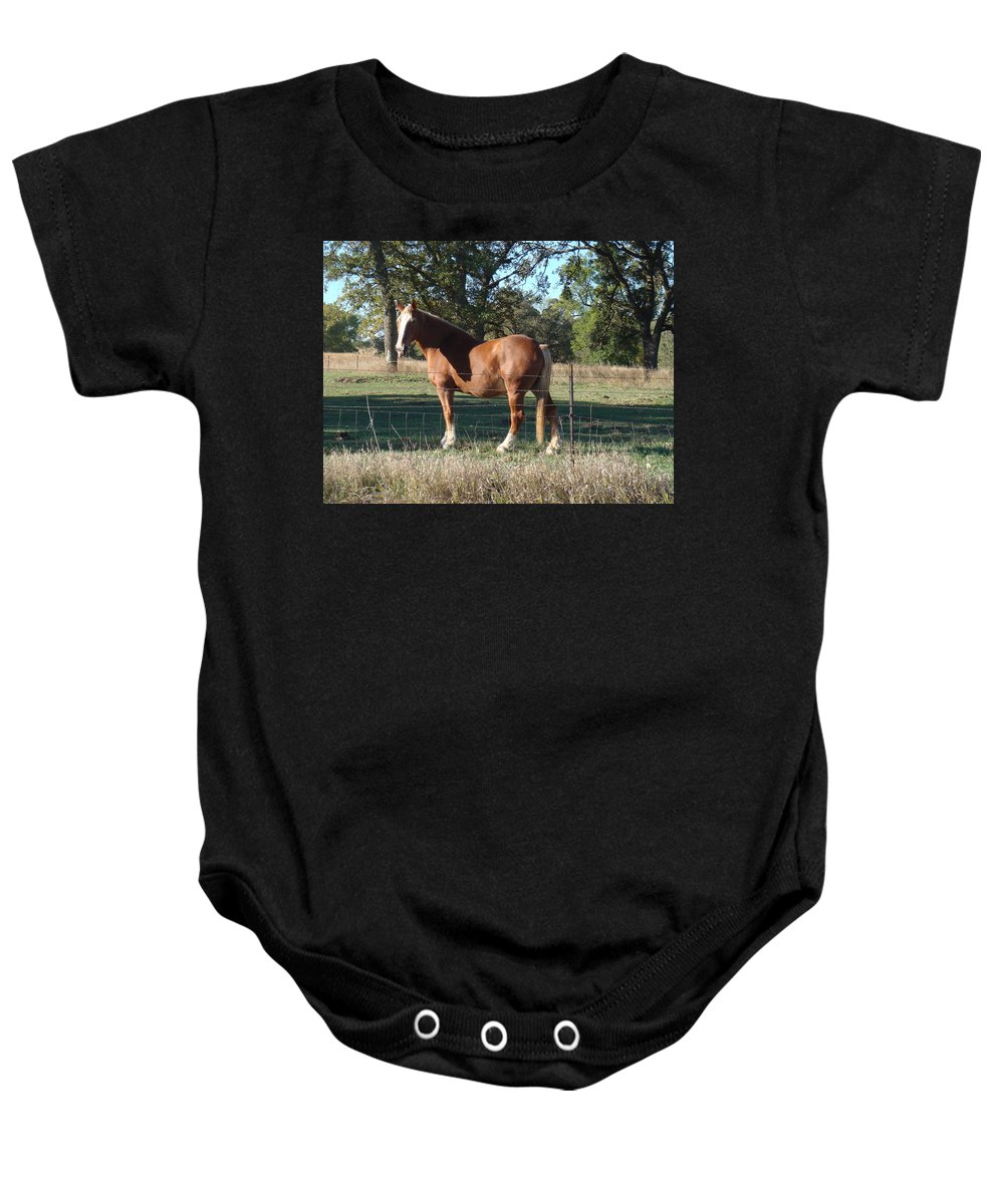 Horse Baby Onesie featuring the photograph Bud Wiser by Bonfire Photography