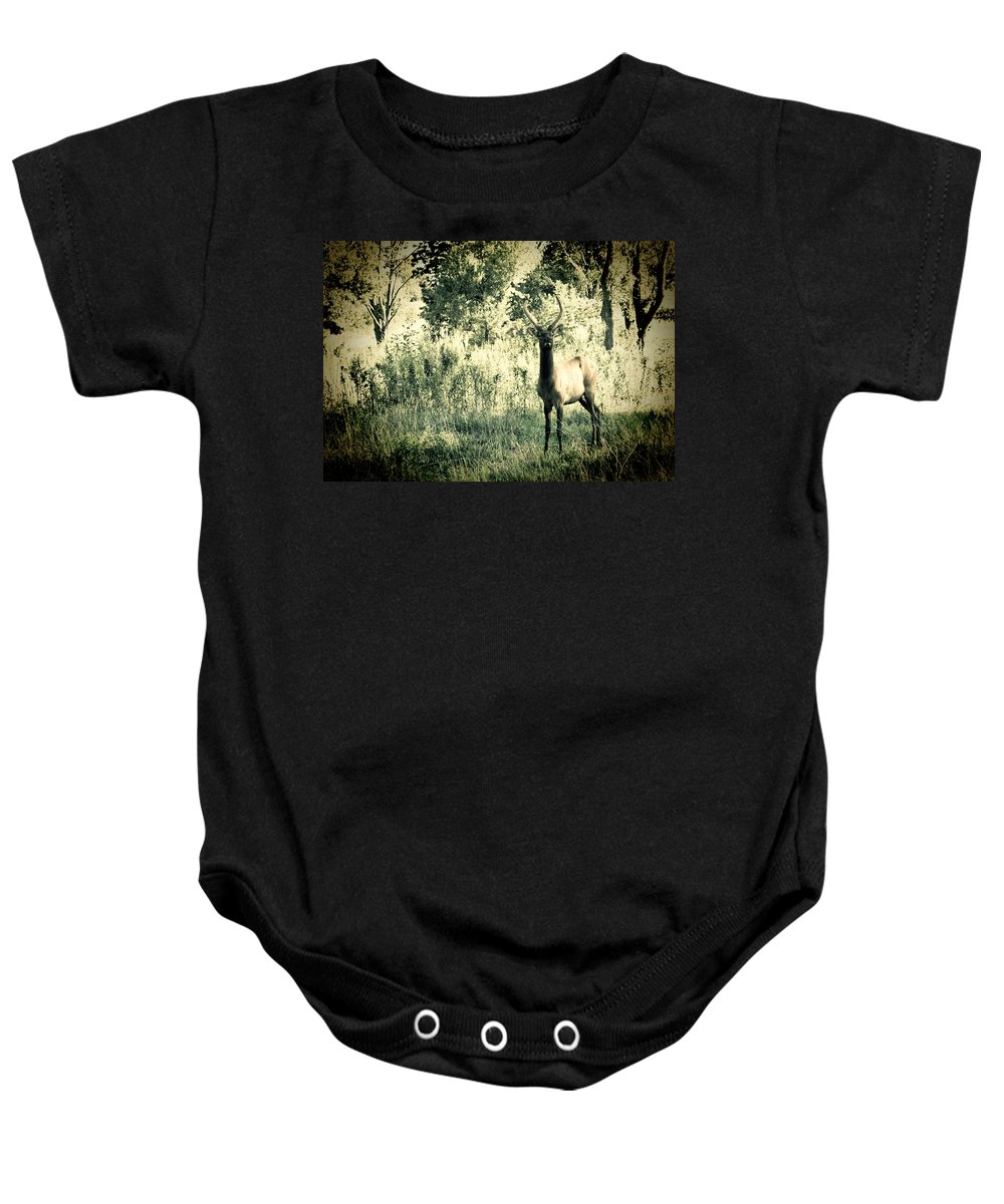 Elk Baby Onesie featuring the photograph Camouflage Elk by Sheri Bartoszek
