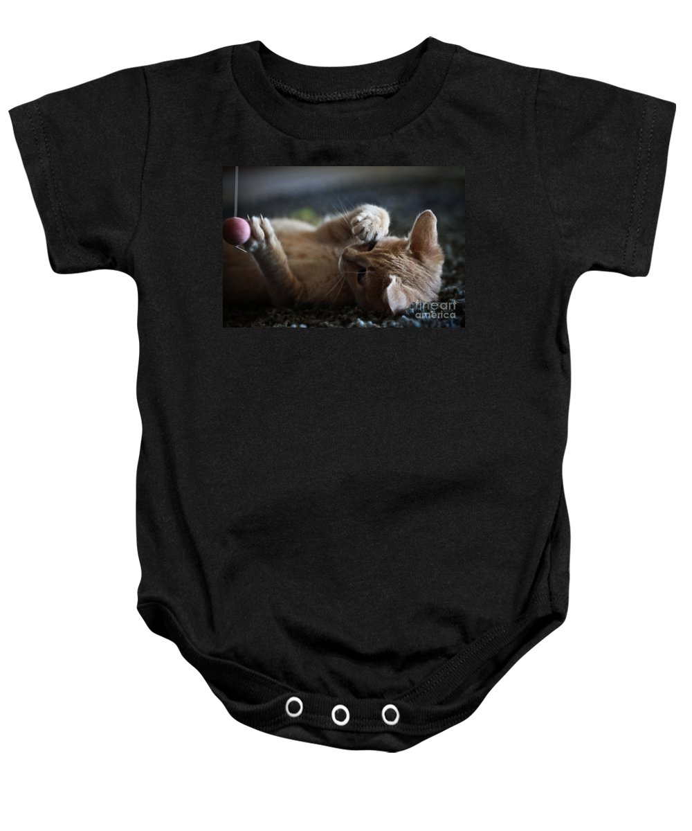 Kittens Baby Onesie featuring the photograph Can't Stop Spinning by Kim Henderson