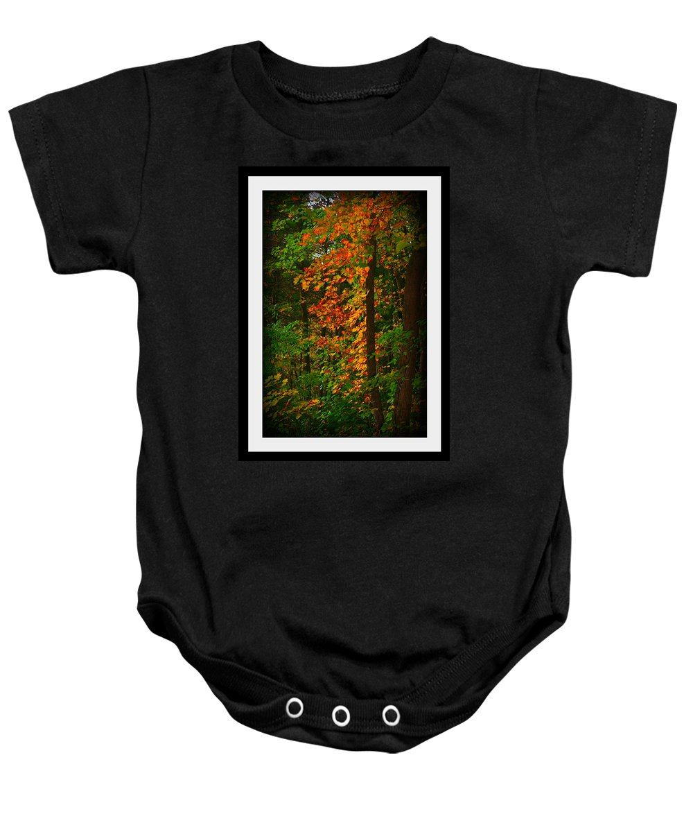 Changing Seasons Baby Onesie featuring the photograph Changing Seasons by Barbara S Nickerson